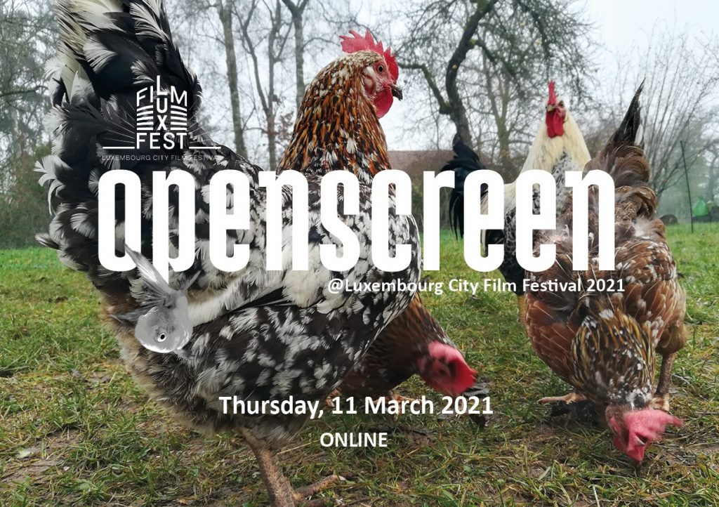 Open Screen virtual event at Lux Film Fest 2021